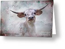 Long Horn Greeting Card