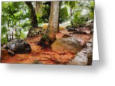 Long Journey Of A Tortoise Greeting Card
