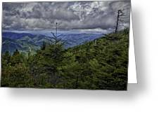 Long Misty Days Greeting Card