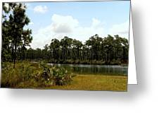 Long Pine Key Greeting Card