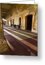 Long Shadows In San Cristobal Greeting Card