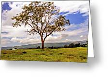 Long Tree Shenandoah Valley West Virginia  Greeting Card