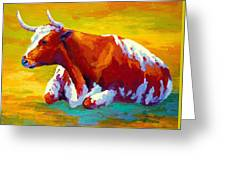 Longhorn Cow Greeting Card