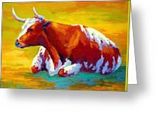 Longhorn Cow Greeting Card