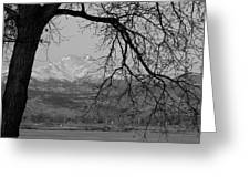 Longs Peak And Mt. Meeker The Twin Peaks Black And White Photo I Greeting Card by James BO  Insogna