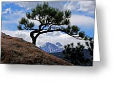 Longs Peak Framed Greeting Card
