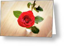 Look Down On A Rose Greeting Card
