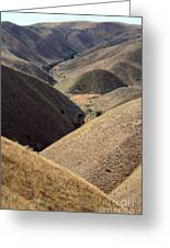 Look Out Mountain Idaho Greeting Card