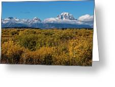 Looking Across Willow Flats To Mt Moran Greeting Card