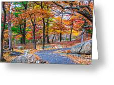 Looking Down A Trail On Bear Mountain New York Greeting Card