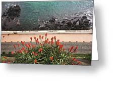 Looking Down, Angra Do Heroismo, Terceira Island Of Portugal Greeting Card by Kelly Hazel