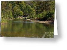 Looking Down Bryant Creek Greeting Card