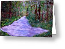 Looking Down The Creek Greeting Card