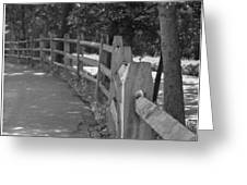 Looking Down The Fence Greeting Card