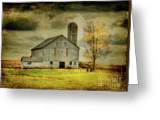 Looking For Dorothy Greeting Card by Lois Bryan