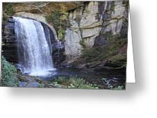 Looking Glass Falls Side View Greeting Card