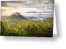 Looking Glass Sunrise - Blue Ridge Parkway Landscape Greeting Card by Dave Allen