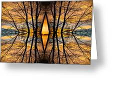Looking Through The Trees Abstract Fine Art Greeting Card