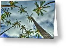 Looking Up The Hawaiian Palm Tree Hawaii Collection Art Greeting Card