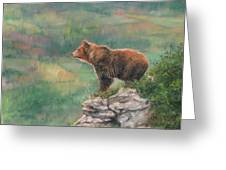 Lookout Greeting Card by David Stribbling