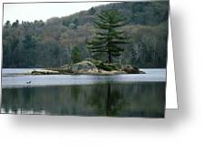 Loon At Black Lake Greeting Card