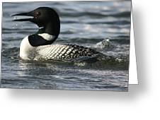Loon Cries Greeting Card
