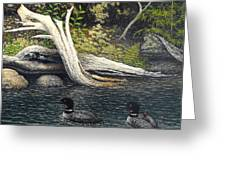 Loons On Saranac Lake Greeting Card