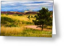 Lory State Park Impression Greeting Card