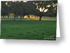 Los Angeles National Cemetary Greeting Card