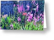 Los Osos Flower Garden Greeting Card