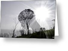 Lost Connection With Nature Greeting Card