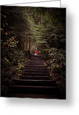Lost In Nature Greeting Card