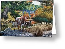 Lost Maples Watering Hole Greeting Card