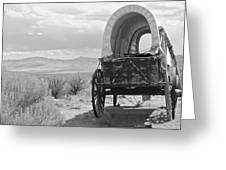 Lost On The Oregon Trail Greeting Card