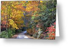 Lost Road Greeting Card by Bob Jackson