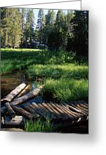 Lost Trout Creek Greeting Card