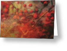 Lost Vintage Crabapples 5942 Ldp_2 Greeting Card