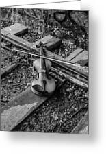 Lost Violin Greeting Card