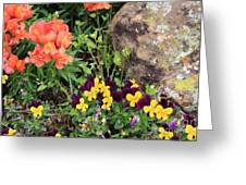 Lots Of Color Greeting Card