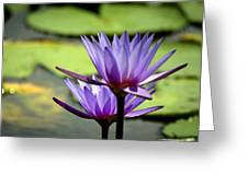 Lotus 5 Greeting Card