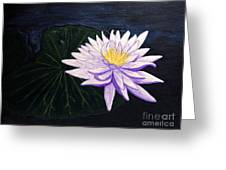 Lotus Blossom At Night Greeting Card