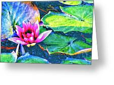 Lotus Blossom Greeting Card