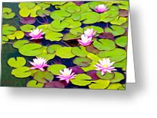 Lotus Blossom Lily Pads Greeting Card