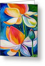 Lotus Blossoming Greeting Card