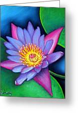 Lotus Divine Greeting Card
