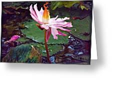 Lotus Fire Greeting Card