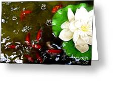 Lotus Flower And Gold Fish Greeting Card