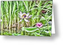 Lotus Flower On The Water Greeting Card
