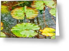Lotus Flowers Leaves Greeting Card