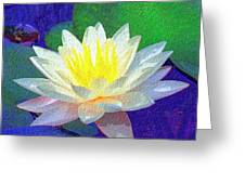 Lotus Grace Greeting Card